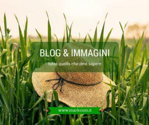 Blog e immagini: tutto quello che devi sapere