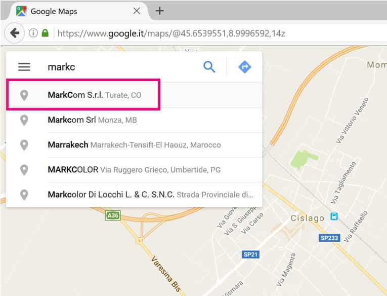 ricerca-google-maps
